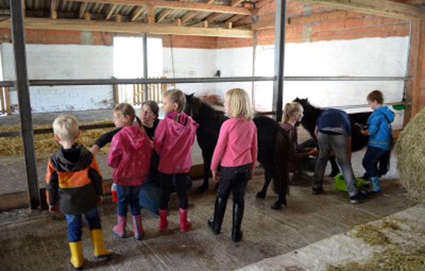 Kindernachmittag-kinder-bemalen-ein-pferd Aktuelles - Tierschutzhof Wardenburg