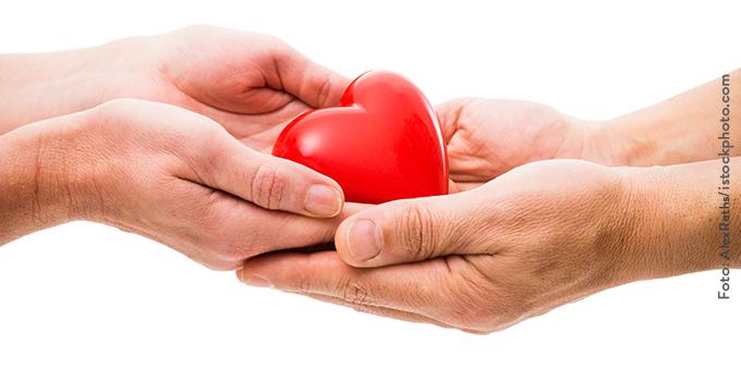 Spenden_klein Fördern & Helfen im Tierschutzligadorf