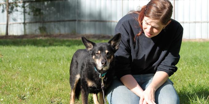 ehrenamtlich_klein-1 Fördern & Helfen im Tierschutzligadorf