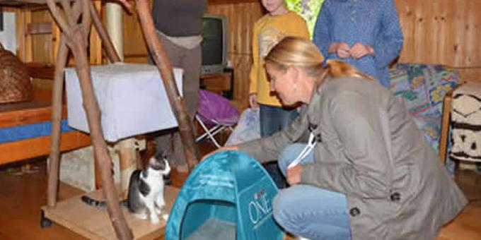 arbeit-der-stiftung Die Tierschutzliga Stiftung