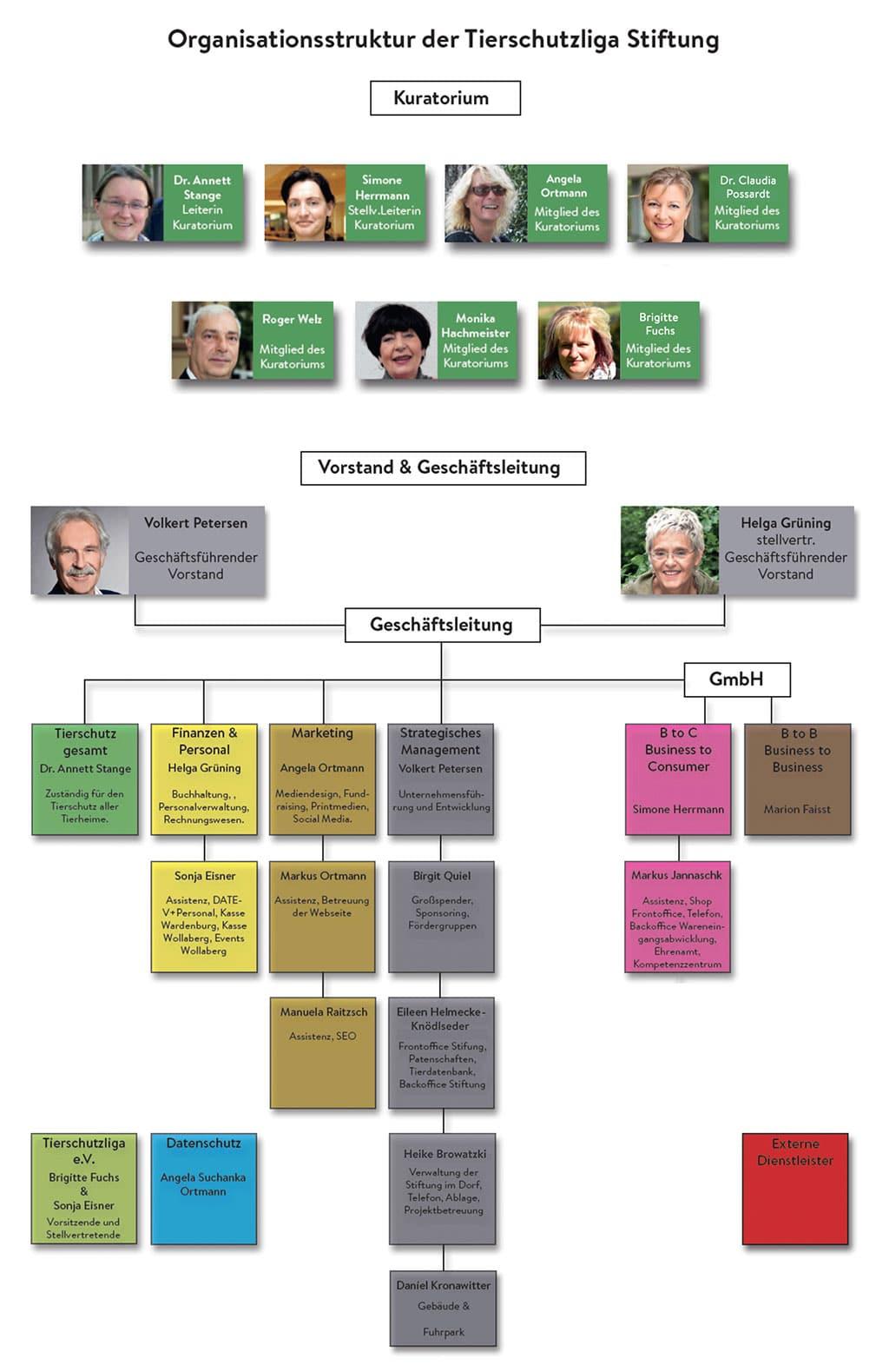 organigramm-tierschutzliga Organisationsstruktur Stiftung Tierschutzliga