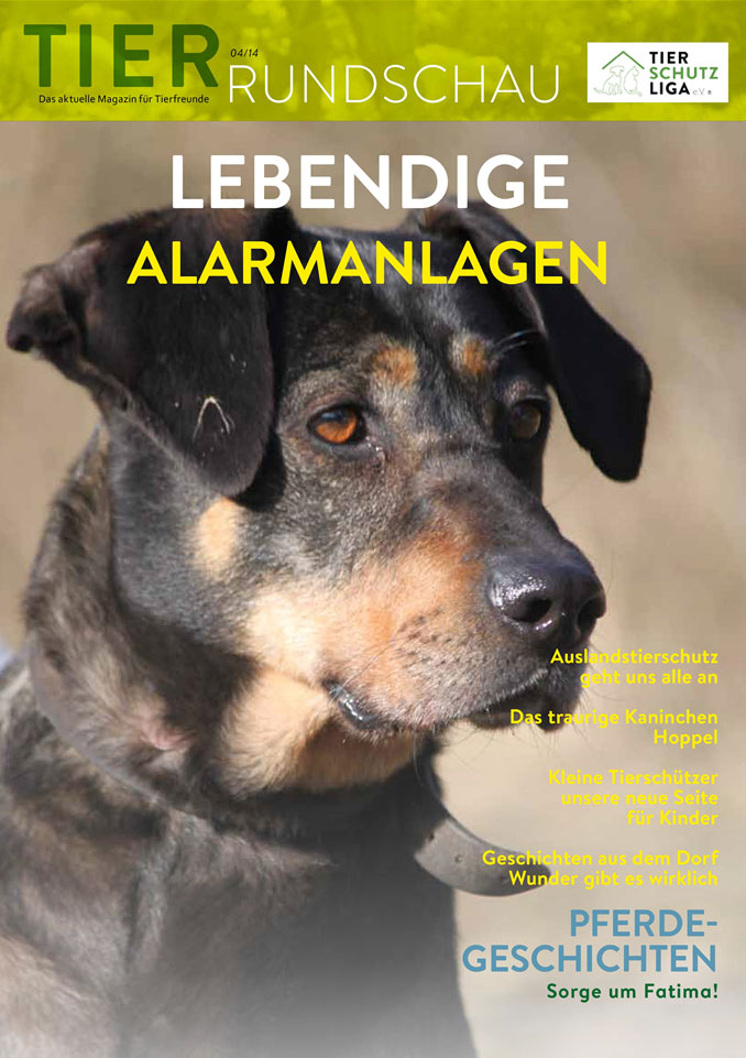 Tierrundschau-1404 Tierrundschau - aktuelles Tiermagazin