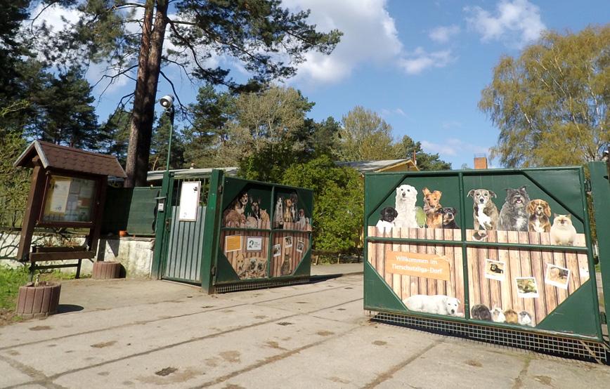 Beitragsbild Tierschutzliga Dorf Tor offen