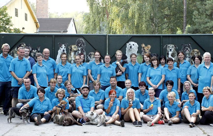Team-ehrenamtliche-vom-tierschutzligadorf Jobs als Tierpfleger, Tiermedizinische Fachangestellte, Tierarzthelfer