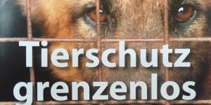 Tierschutz-Grenzenlos-Auslandshunde-aufnahmepatenschaft-300x150 Fördern & Helfen im Tierschutzligadorf