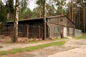 hundehaus1-300x200 Das Dorf - Tierschutzliga Dorf