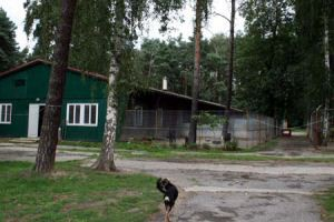 hundehaus2-300x200 Das Dorf - Tierschutzliga Dorf