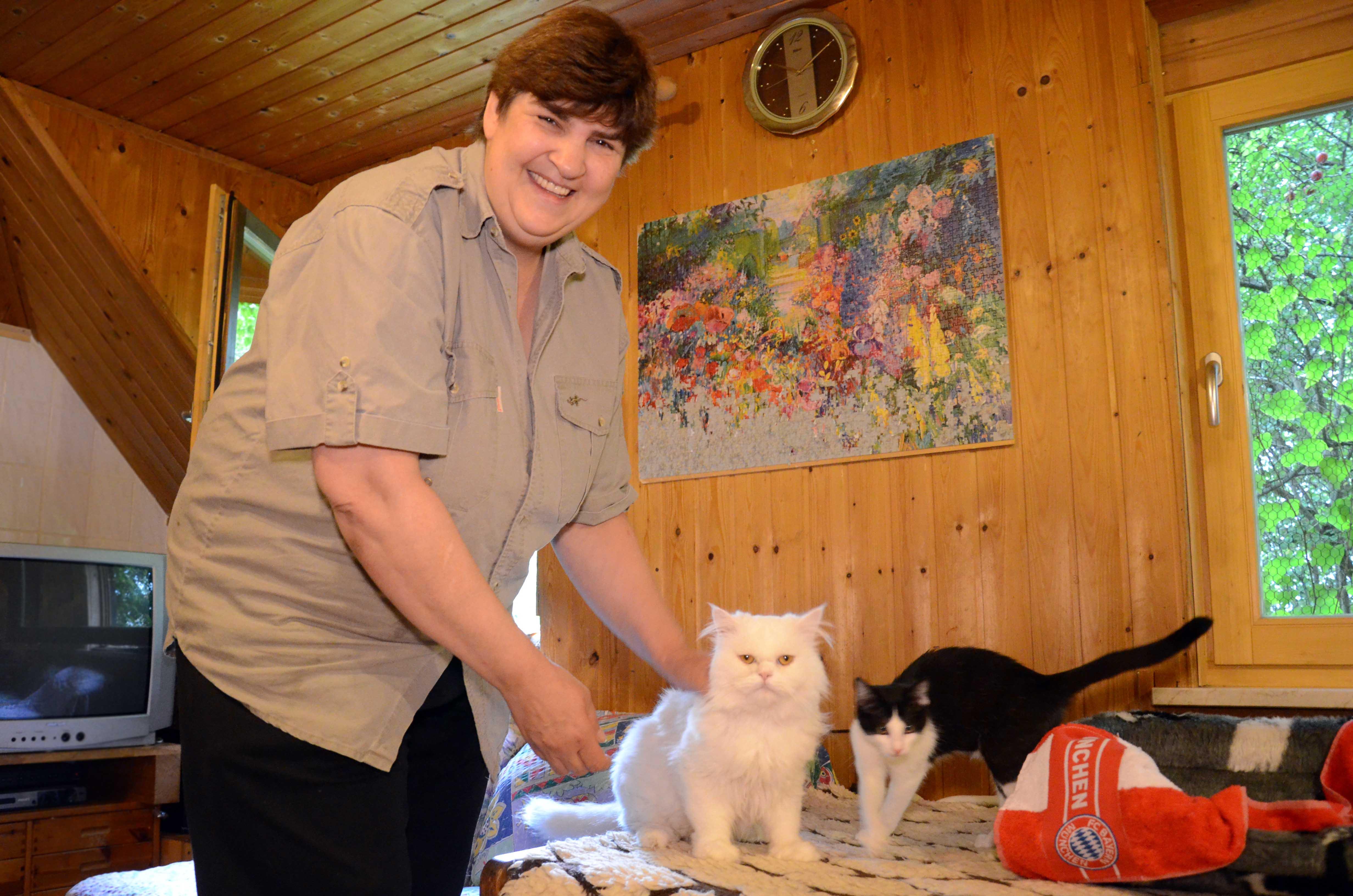 KSM_Arbeit_Scheffler03 Unterstützen Sie die Katzenstation München