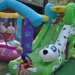 DSC_5021-1-150x150 Tierheimfest – 20 Jahre Tierschutzliga-Dorf