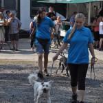 DSC_5039-1-150x150 Tierheimfest – 20 Jahre Tierschutzliga-Dorf