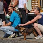 DSC_5040-2-150x150 Tierheimfest – 20 Jahre Tierschutzliga-Dorf