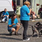 DSC_5065-1-150x150 Tierheimfest – 20 Jahre Tierschutzliga-Dorf