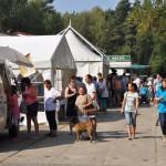DSC_5079-1-150x150 Tierheimfest – 20 Jahre Tierschutzliga-Dorf