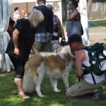 DSC_5106-2-150x150 Tierheimfest – 20 Jahre Tierschutzliga-Dorf