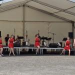 DSC_5133-1-150x150 Tierheimfest – 20 Jahre Tierschutzliga-Dorf