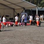 DSC_5178-1-150x150 Tierheimfest – 20 Jahre Tierschutzliga-Dorf