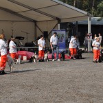 DSC_5179-1-150x150 Tierheimfest – 20 Jahre Tierschutzliga-Dorf