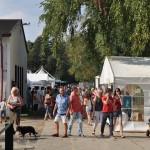 DSC_5204-1-150x150 Tierheimfest – 20 Jahre Tierschutzliga-Dorf