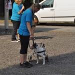 DSC_5253-1-150x150 Tierheimfest – 20 Jahre Tierschutzliga-Dorf