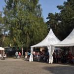 DSC_5254-1-150x150 Tierheimfest – 20 Jahre Tierschutzliga-Dorf