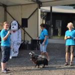 DSC_5299-1-150x150 Tierheimfest – 20 Jahre Tierschutzliga-Dorf