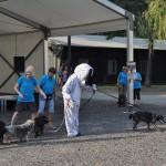 DSC_5304-1-150x150 Tierheimfest – 20 Jahre Tierschutzliga-Dorf