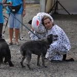 DSC_5321-1-150x150 Tierheimfest – 20 Jahre Tierschutzliga-Dorf