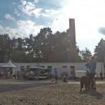 GOPR8076-Kopie-1-150x150 Tierheimfest – 20 Jahre Tierschutzliga-Dorf