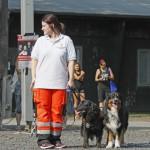 MG_3962-Kopie-1-150x150 Tierheimfest – 20 Jahre Tierschutzliga-Dorf