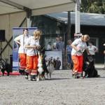 MG_3979-Kopie-1-150x150 Tierheimfest – 20 Jahre Tierschutzliga-Dorf