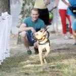 MG_4032-Kopie-1-150x150 Tierheimfest – 20 Jahre Tierschutzliga-Dorf