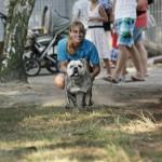 MG_4069-Kopie-1-150x150 Tierheimfest – 20 Jahre Tierschutzliga-Dorf
