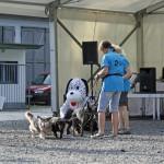 MG_4098-Kopie-1-150x150 Tierheimfest – 20 Jahre Tierschutzliga-Dorf