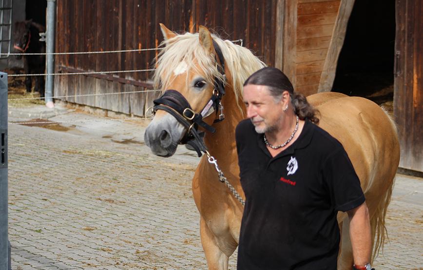beitragsbild_Impressionen Aktuelles - Tierschutzhof Wardenburg