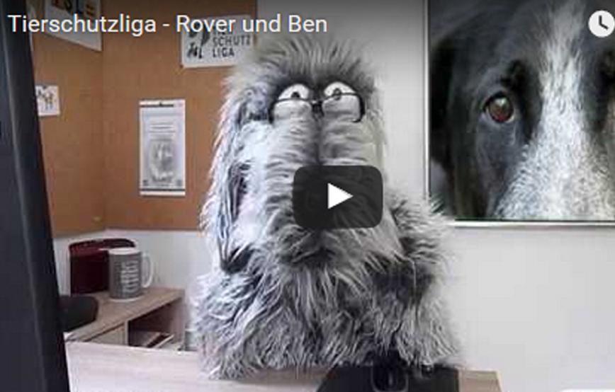 Beitragsbild_roverundben1 Tierschutz mit ROVER