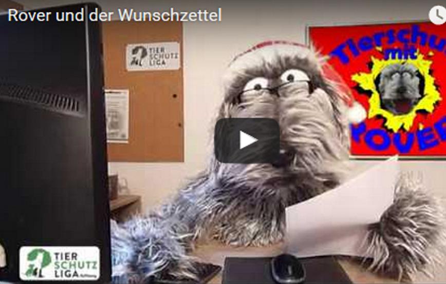 beitragsbild_-Weihnachtswunsch1 Tierschutz mit ROVER