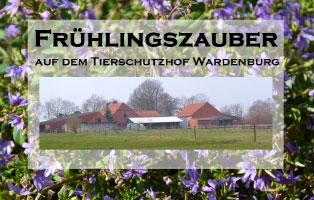 fruehlingszauber Unterstützen Sie das Tierheim Wollaberg