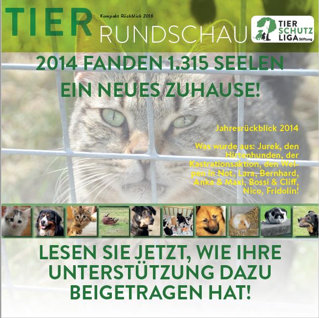 beitragsbild-tierrundschau-kompakt-2015 Tierrundschau kompakt - Tierschutzzahlen