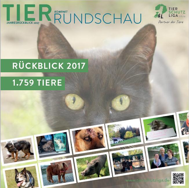 beitragsbild-tierrundschau-kompakt-2018 Tierrundschau kompakt - Tierschutzzahlen