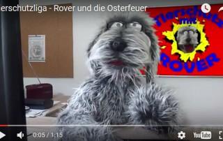 beitragsbild-rover-osterfeuer-tierschutzliga-320x202 Tierheim Tagebuch