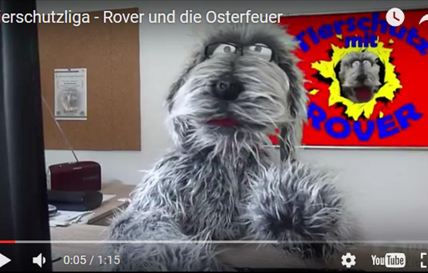 beitragsbild-rover-osterfeuer-tierschutzliga Kinder-Club Tierschutz