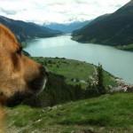 leserbilder-holger-liniger-paule-150x150 Urlaub mit Hund - Die schönsten Orte