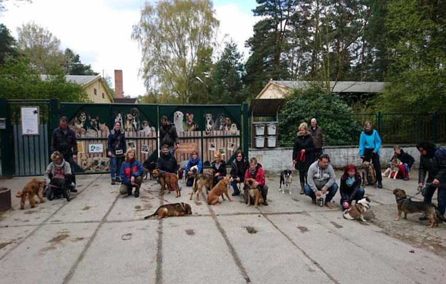 Hundewanderung 2017 Gruppenfoto