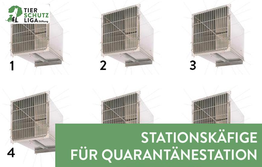 beitragsbild-Stationskäfig-quarantänestation Tierschutzliga-Dorf