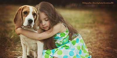beitragsbild-glücklich-vermittelt-neu Unsere Tierheimtiere