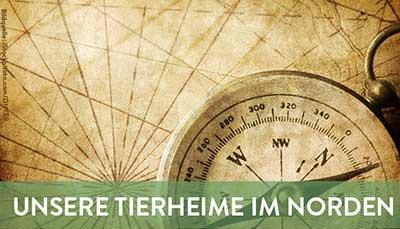 beitragsbild-tierheime-nord Startseite Tierschutzliga Stiftung