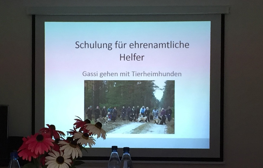 Gassigeherschulung-Seminar-für-ehrenamtliche-Helfer Veranstaltungen - Tierschutzliga Dorf