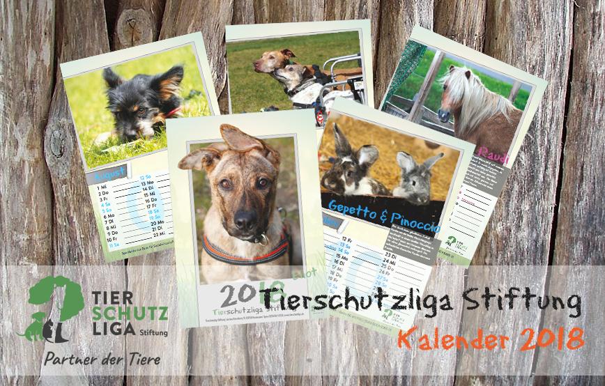 beitragsbild-kalender2018-2 Startseite Tierschutzliga Stiftung