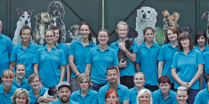 beitragsbild-laufende-projekte-neu Tierschutzprojekte