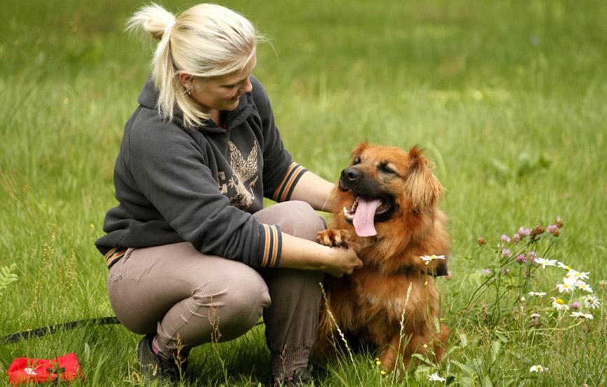 Hund-Knut-liegt-neben-frau-im-gras Startseite Tierschutzliga Stiftung